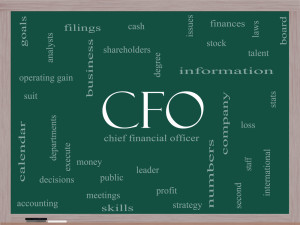 chief financial officer  What Is A Chief Financial Officer? | Biz Brain