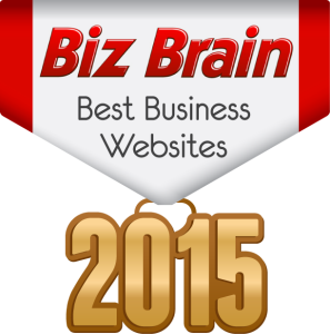 Biz Brain - Best Business Websites 2015
