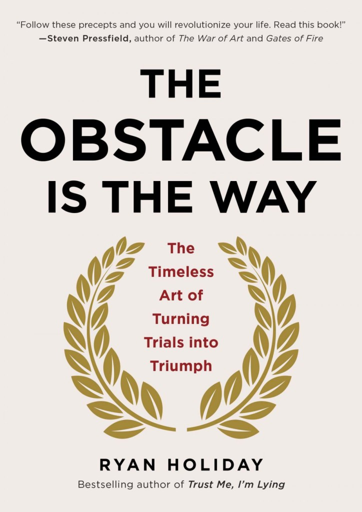 the-obstacle-is-the-way-business-books